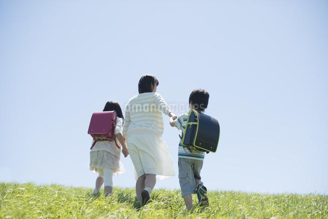 草原で手をつなぐ小学生と先生の後姿の写真素材 [FYI04549244]