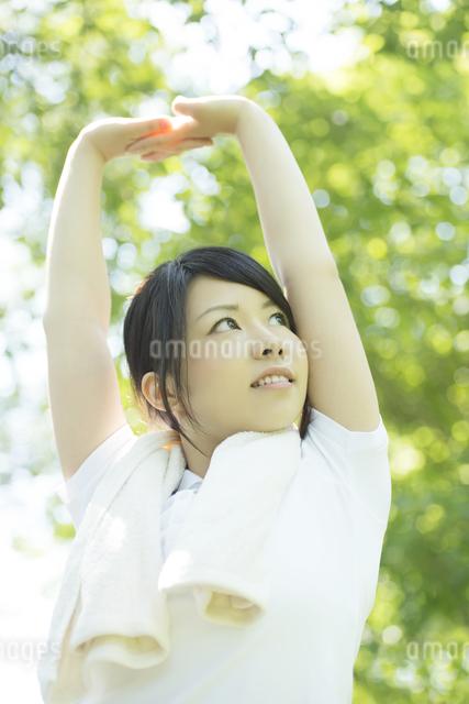 準備運動をする女性の写真素材 [FYI04549808]