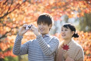 紅葉の写真を撮るカップルの写真素材 [FYI04549857]