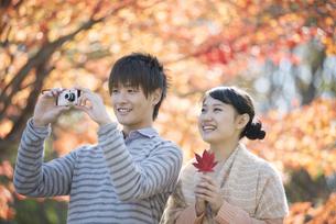 紅葉の写真を撮るカップルの写真素材 [FYI04549860]