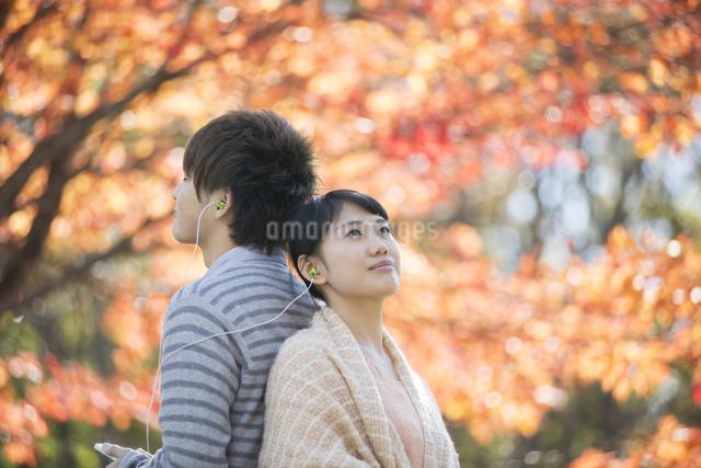 紅葉の前で音楽を聴くカップルの写真素材 [FYI04549881]