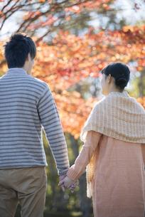 紅葉の前で手をつなぐカップルの後姿の写真素材 [FYI04549952]