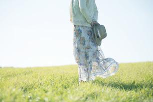 麦わら帽子を持つ女性の後姿の写真素材 [FYI04550021]