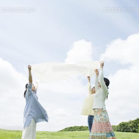 草原でシートを広げる3人の女性の写真素材 [FYI04550510]