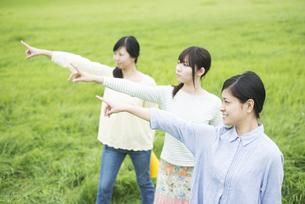 草原で指差しをする3人の女性の写真素材 [FYI04550581]