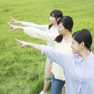 草原で指差しをする3人の女性の写真素材 [FYI04550582]