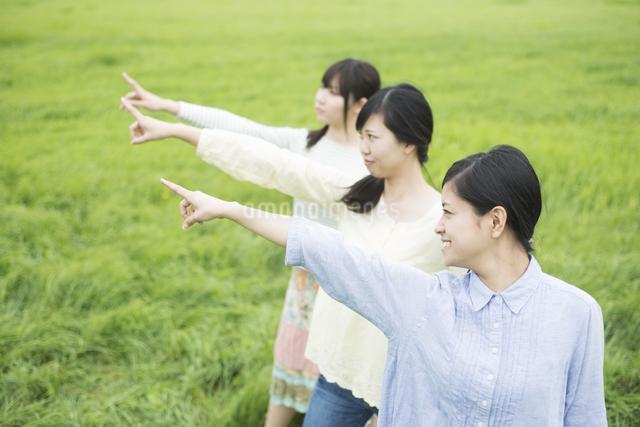 草原で指差しをする3人の女性の写真素材 [FYI04550585]