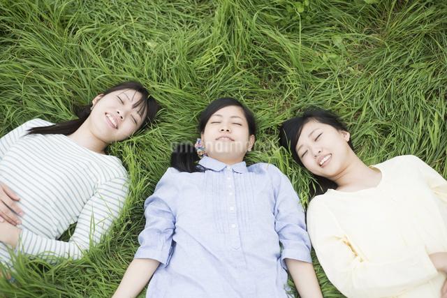 草原に寝転ぶ3人の女性の写真素材 [FYI04550608]