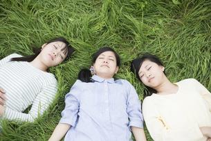 草原に寝転ぶ3人の女性の写真素材 [FYI04550609]