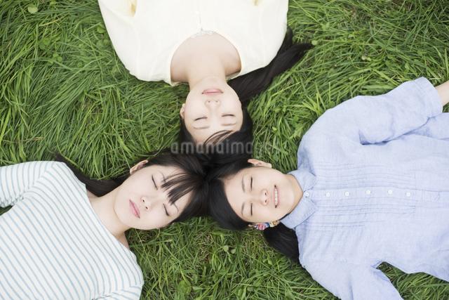 草原に寝転ぶ3人の女性の写真素材 [FYI04550621]