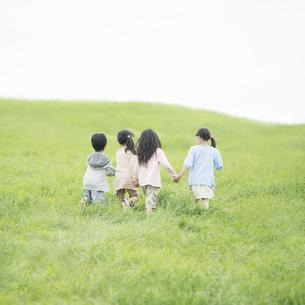 草原で手をつなぐ小学生の後姿の写真素材 [FYI04550835]