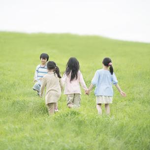草原で手をつなぐ小学生の後姿の写真素材 [FYI04550840]