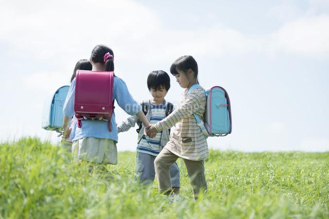 草原で手をつなぐ小学生の写真素材 [FYI04550918]