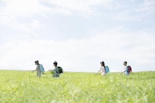 一列で草原を歩く小学生の写真素材 [FYI04550959]