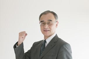 ガッツポーズをするビジネスマンの写真素材 [FYI04551271]