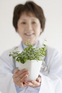 植物を持つ女医の手元の写真素材 [FYI04551279]