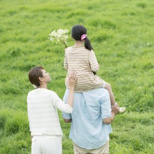 草原で肩車をする親子の後姿の写真素材 [FYI04551333]