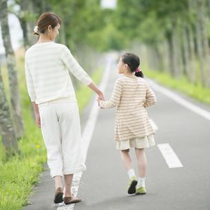一本道で手をつなぐ親子の後姿の写真素材 [FYI04551400]