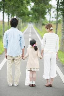 一本道で手をつなぐ親子の後姿の写真素材 [FYI04551437]