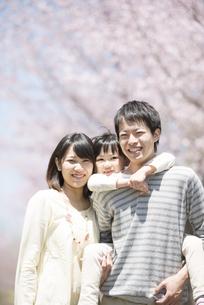 桜の前でおんぶをする親子の写真素材 [FYI04551765]