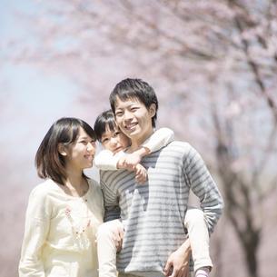 桜の前でおんぶをする親子の写真素材 [FYI04551767]