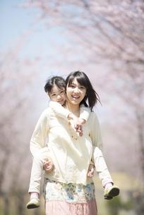 桜の前でおんぶをする親子の写真素材 [FYI04551771]
