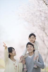 桜の前で肩車をする親子の写真素材 [FYI04551850]