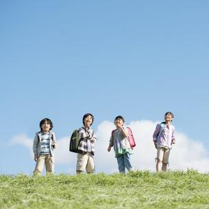 草原で空を見上げる小学生の写真素材 [FYI04552053]
