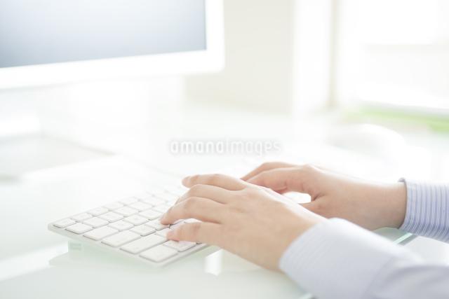 パソコン操作をするビジネスウーマンの手元の写真素材 [FYI04552455]