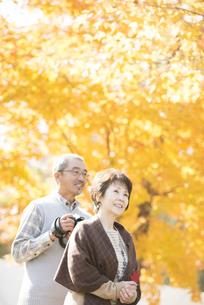 紅葉を眺めるシニア夫婦の写真素材 [FYI04552794]