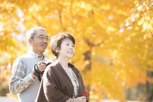 紅葉を眺めるシニア夫婦の写真素材 [FYI04552797]
