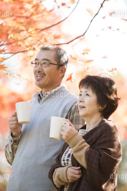 紅葉を眺めるシニア夫婦の写真素材 [FYI04552927]