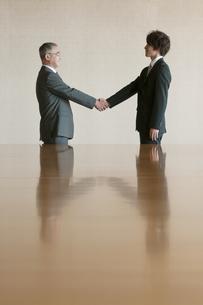 握手をするビジネスマンの写真素材 [FYI04553109]
