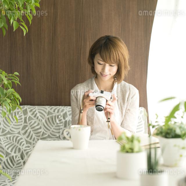 ミラーレス一眼カメラを見る女性の写真素材 [FYI04553178]
