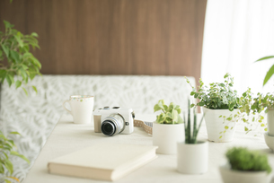 テーブルの上のミラーレス一眼カメラの写真素材 [FYI04553207]