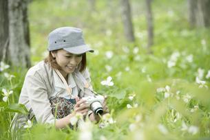 ミラーレス一眼カメラで植物の写真を撮る女性の写真素材 [FYI04553247]