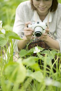 ミラーレス一眼カメラで植物の写真を撮る女性の写真素材 [FYI04553254]