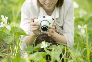 ミラーレス一眼カメラで植物の写真を撮る女性の写真素材 [FYI04553277]