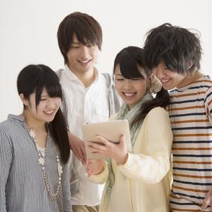 タブレットPCを見る大学生の写真素材 [FYI04553421]