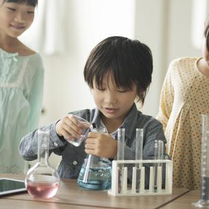 実験をする小学生の写真素材 [FYI04553637]