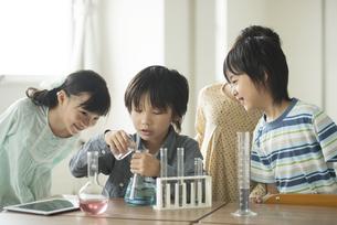 実験をする小学生の写真素材 [FYI04553639]