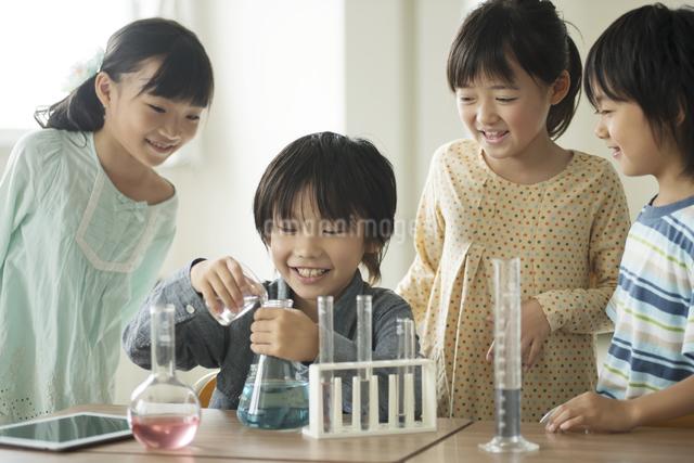 実験をする小学生の写真素材 [FYI04553640]