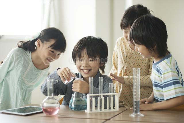 実験をする小学生の写真素材 [FYI04553641]