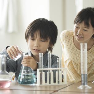 実験をする小学生の写真素材 [FYI04553644]