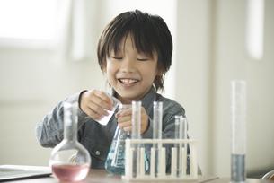 実験をする小学生の写真素材 [FYI04553647]