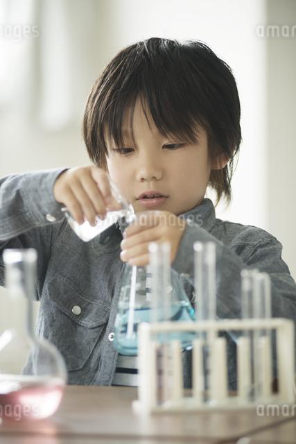 実験をする小学生の写真素材 [FYI04553649]