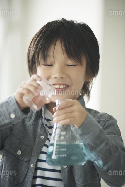 実験をする小学生の写真素材 [FYI04553650]