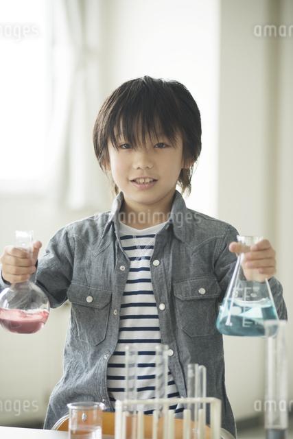 実験をする小学生の写真素材 [FYI04553655]