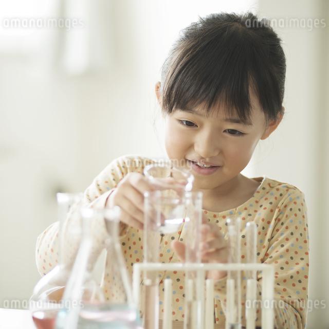 実験をする小学生の写真素材 [FYI04553658]