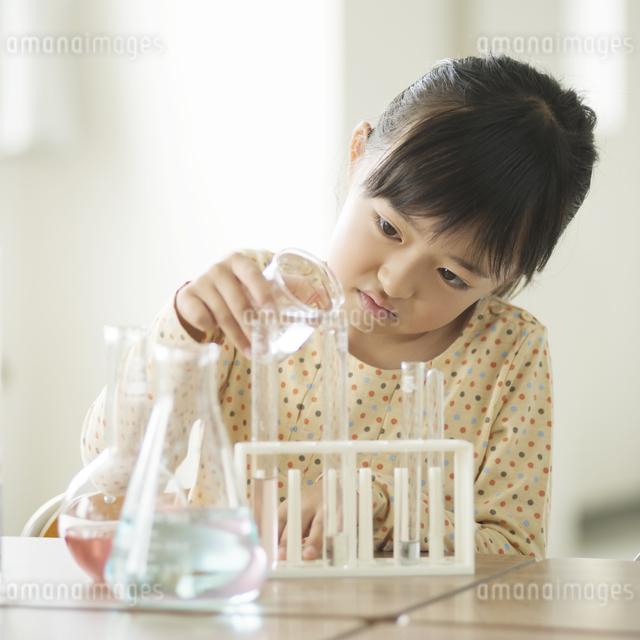実験をする小学生の写真素材 [FYI04553661]